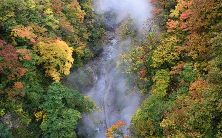 Autumn colours and steam clouds on the Oyasukyo Gorge
