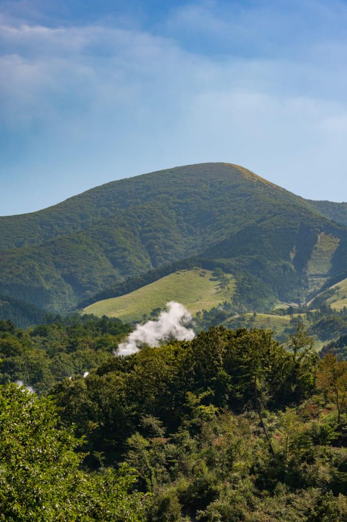 Bue sur le mont Waita , Kumamoto