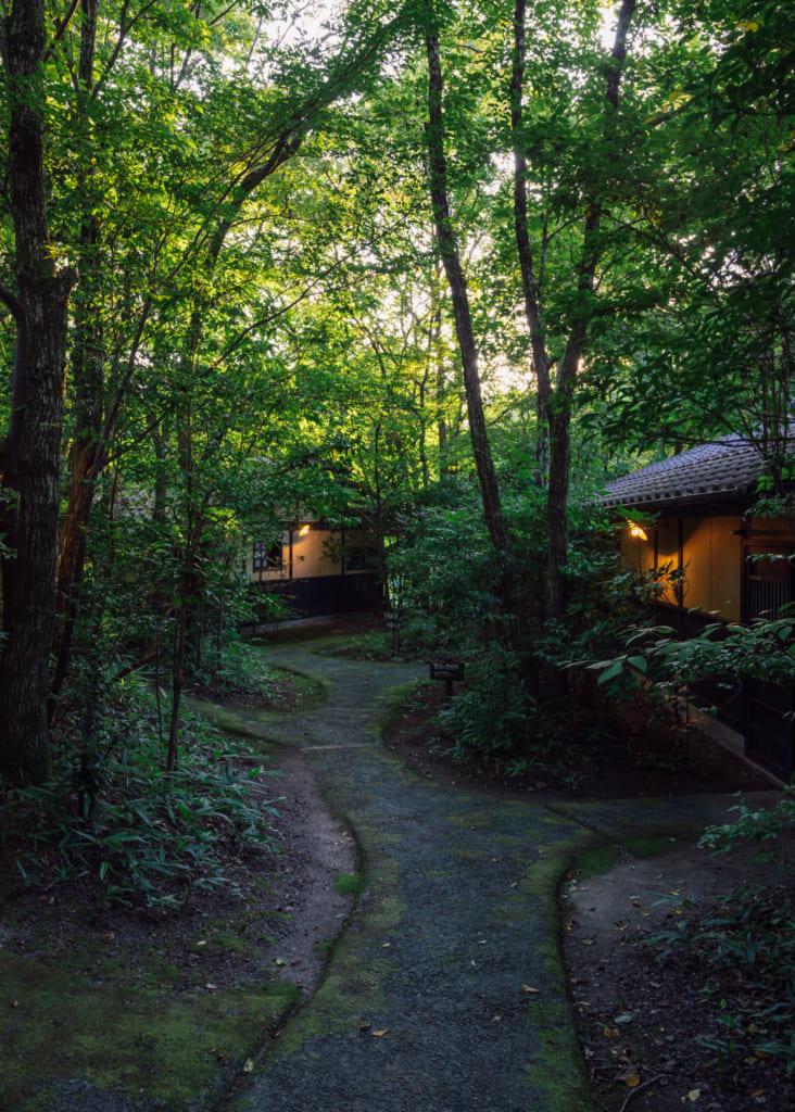 Les bâtiments cachés dans la forêt de Yuka Onsen, à Waita Onsen