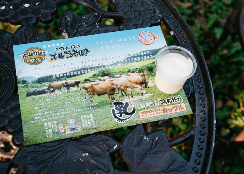 Petit pot de yaourt sur un dépliant de l'élevage de Jersiaises