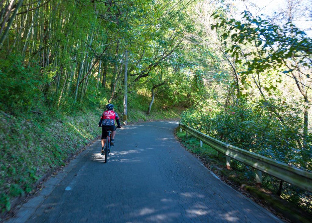 Le guide sur son vélo traversant un sous-bois