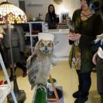 Más allá del Cat Café: los animales invaden las cafeterías
