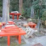 Montañas, zen y… ¡zapatos gigantes! Templo Saijoji en Odawara