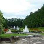 La vegetación hecha espectáculo: el Parque Prefectural de Sagamihara