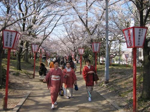 Hanami en Kansai