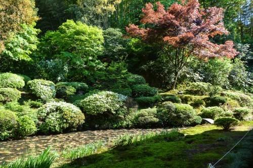 Jardín del templo Ryukouin de Murakami.