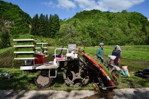 Granjeros cultivando arroz en Takane con ayuda de una máquina.