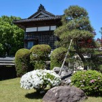 Murakami: descubre sus maravillosos jardines japoneses