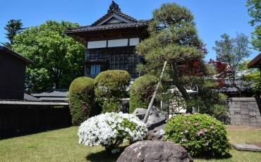 Jardines de Murakami.