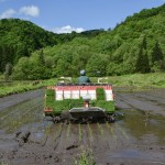 Murakami: siembra de arroz y estancia en una granja japonesa