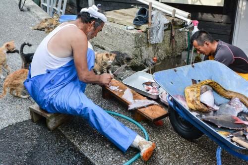 Pescadores de Fukashima (Oita).