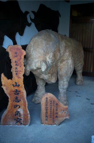 Tsunotsuki: tauromaquia de Yamakoshi.