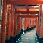 Exploramos Fushimi (Kioto): de santuarios a fábricas de sake