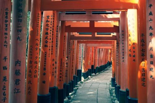 Arcos torii del santuario Fushimi Inari.