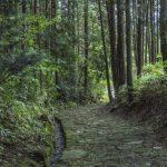 Un largo recorrido por el sendero de Nakasendo desde el pueblo de Nakatsugawa