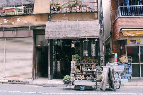Rabi Adesso, tienda bonsai en el barrio de Koenji, Suginami, Tokio, Japón