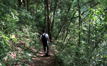 voyapon-image-takao-mount-randonnee-sentier