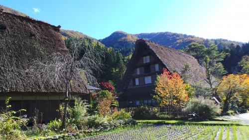 Les maisons gasshō-zukuri de Shirakawa-gō dans les Alpes japonaises, Gifu, Japon.