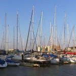 Le port de plaisance d'Enoshima se prépare à accueillir les J.O. de 2020