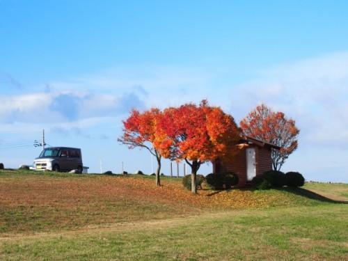 Près de la rivière Miomote, ville de Murakami, Niigata, Japon.