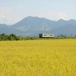 Iiyama : la petite Kyoto enneigée des Alpes japonaises