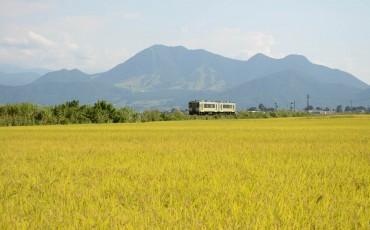 train local à Iiyama