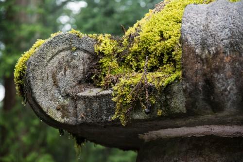 détail d'une lanterne en pierre au sanctuaire Toshogu à Nikko