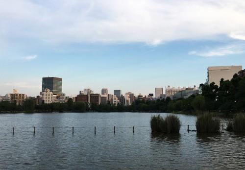 Le jardin à Ueno à Tokyo