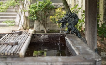 Voyapon-Kamakura-May-04444UPDATE-1024x684
