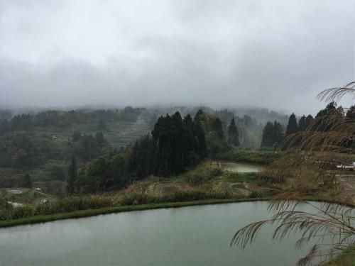 Yamakoshi, écotourisme, rizière, agriculture, Japon