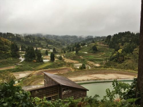 Yamakoshi, écotourisme, agriculture, Japon, Niigata,