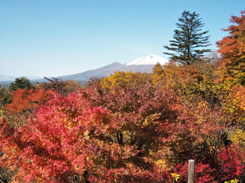 Karuizawa, montagne, nagano, shinkansen, automne, usuitouge, mont asama