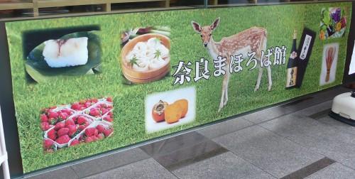 antenna shop, tokyo, région du japon, préfecture, traditions locales, Nara