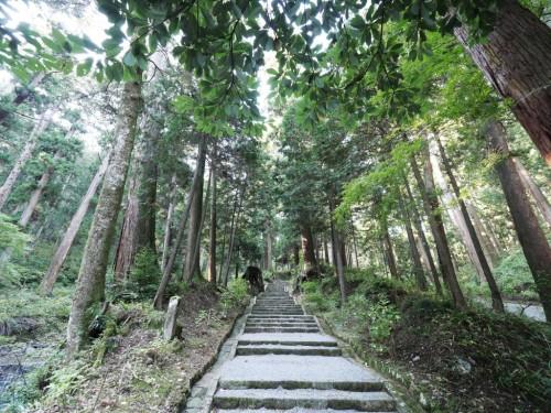 Daiyuzan Saijo-ji, temple, Hakone, Mont Fuji, Tengu, Forêt de cèdres centenaires