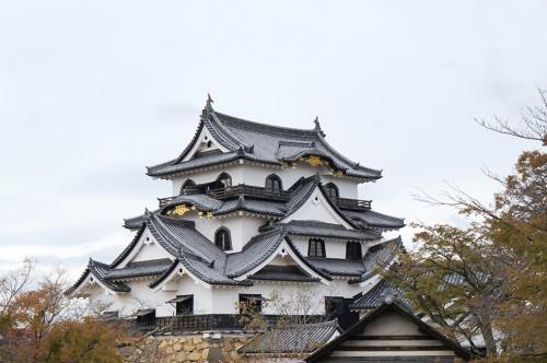 Shiga, château de Hikone, Omihachiman, Taga-taisha
