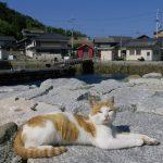 Top 3 des paysages d'Ozu dans le Shikoku
