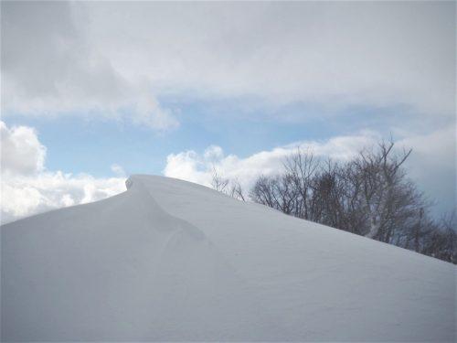 Koshi Kogen,Yamakoshi,Ski,Raquettes,Niigata