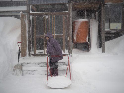 Neige à Yamakoshi,Niigata,Satoyama,Cycle de l'eau,Japon