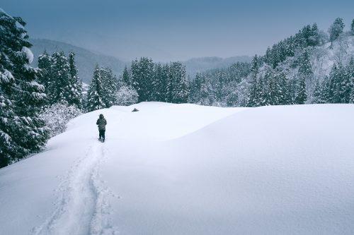 Takane, neige, raquettes, Niigata