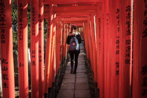 Test, Wifi gratuit de Tokyo, Connexion internet, Tokyo Wi-Fi, Nezu Jinja