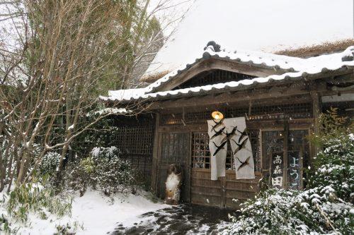 sud de la caldeira du mont Aso, Kumamoto, Kyushu, Itinéraire, Japon, Takamori Dengaku no Sato