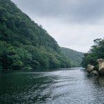 Le fleuve Urauchi, à la découverte de la jungle d'Iriomote