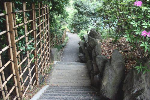 Un escalier dans le jardin du sanctuaire Togo, Tokyo, Japon.