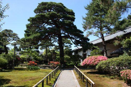 Dans le jardin du musée des cultures du Nord à Niigata, Japon