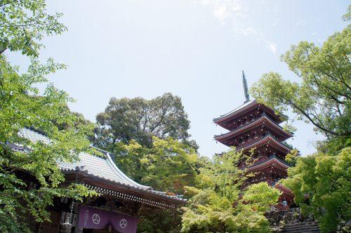 Le temple Chikurin-ji dans la ville de Kochi, sur l'île de Shikoku, Japon