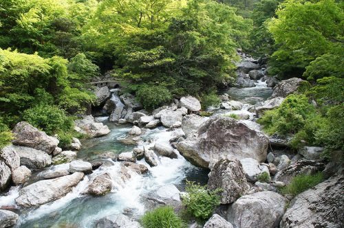 La vallée d'Iwayagawa où coule la rivière Niyodogawa dans la préfecture de Kochi, Japon