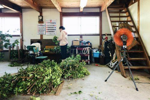 Atelier dans un village près de Toon, préfecture d'Ehime, Japon
