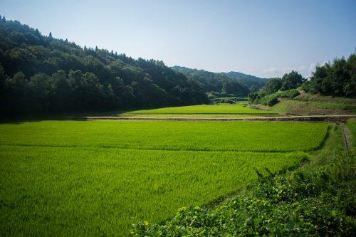 La campagne japonaise près de la ville d'Usuki, préfecture d'Oita, Japon