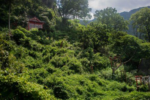 Sanctuaires sur le Mont Yufudake près de Yufuin, préfecture d'Oita, Japon