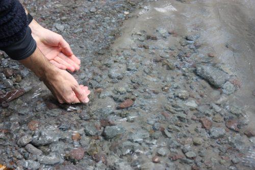 L'eau de source du Mt Daisen dans la préfecture de Tottori, Japon